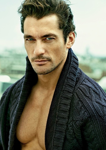 c7022498585ee6bc99b265e28f513ab1--david-james-gandy-james-darcy